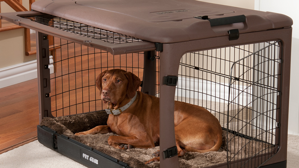 Top 7 Best Dog Cages