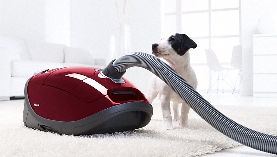 Miele Powerline Best Cylinder Vacuum Cleaner