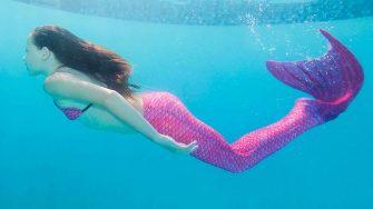 Mermaid Melissa gets mentioned in Sea World Orlando