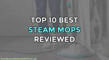 Top 10 Best Steam Mops Reviewed