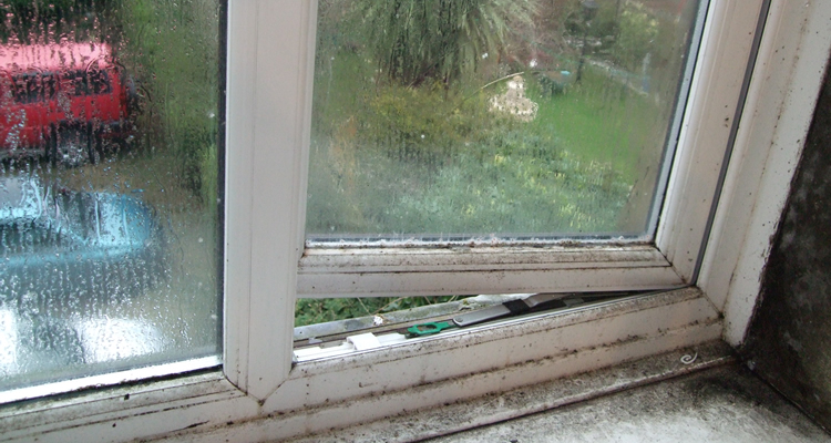 Mouldy Bathroom Window