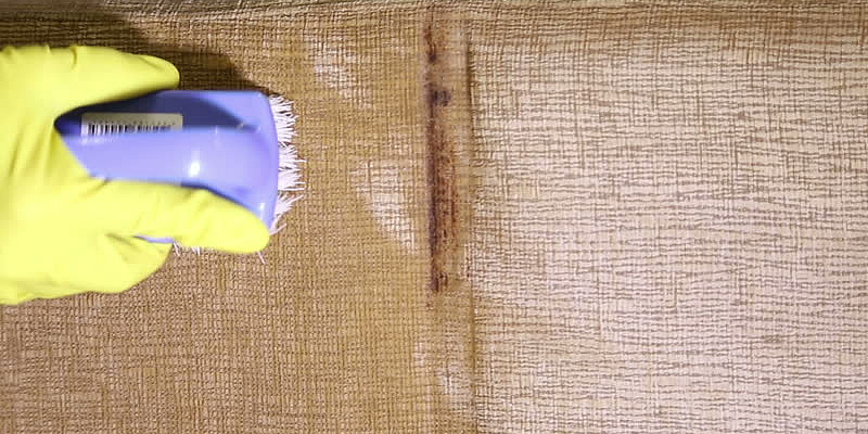 Bristle Brush to Clean Sofa